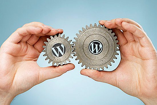 wordpress-developers